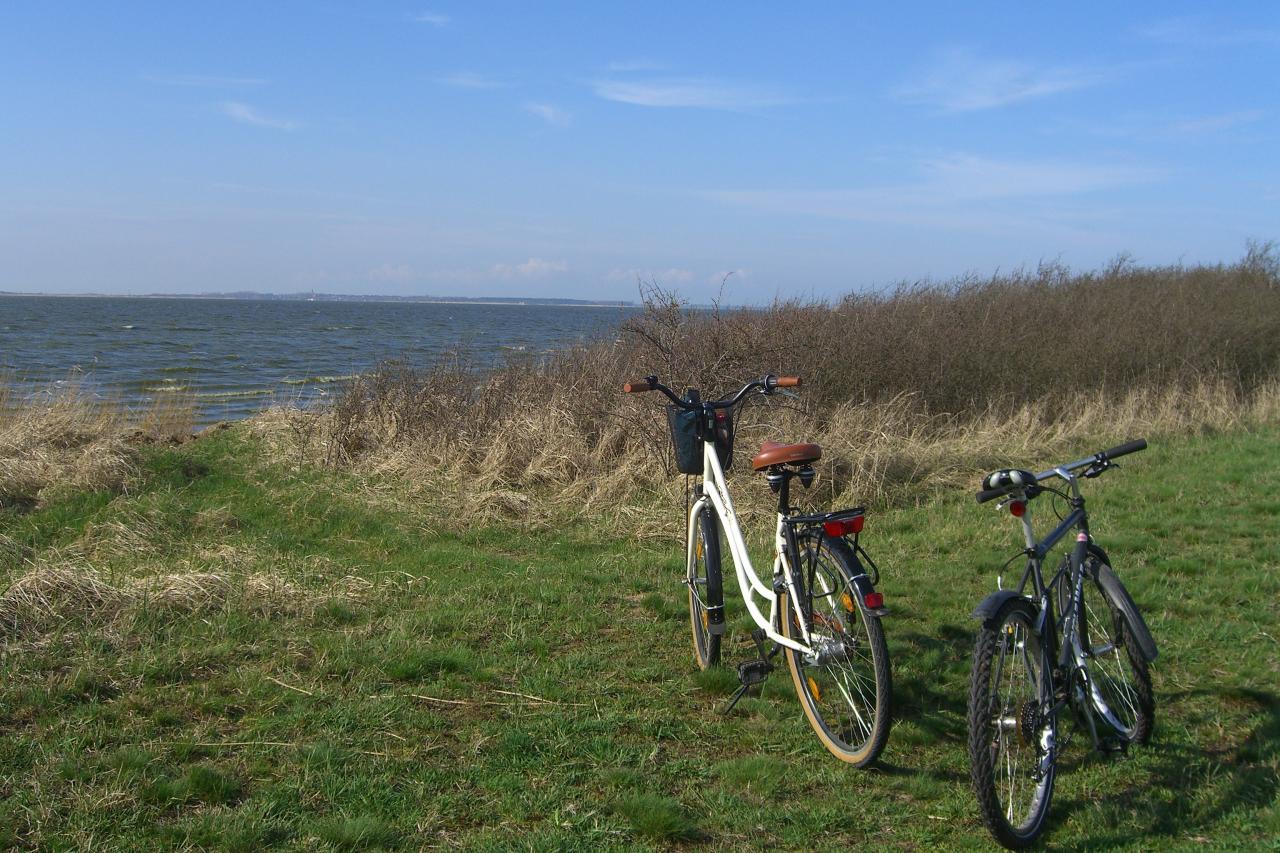Fahrradverleih Zingst